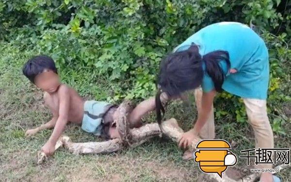 用亲弟弟做诱饵捕蛇,这对姐弟胆儿有点肥!