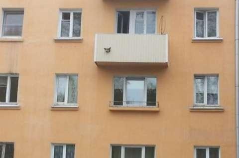 俄罗斯人来告诉你,阳台不是用来晒衣服是用来土豪的