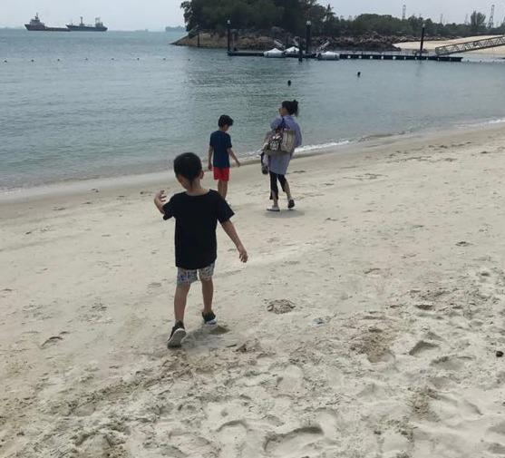 张柏芝带俩儿子海边游玩Lucas和小Q都长高不少
