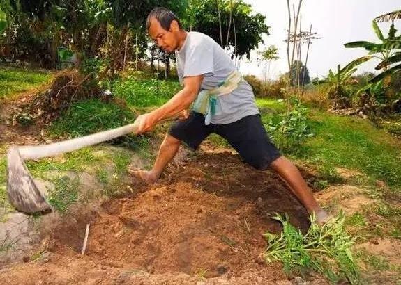 买不起房子的他自己盖,没想到竟然盖出超级农家乐!