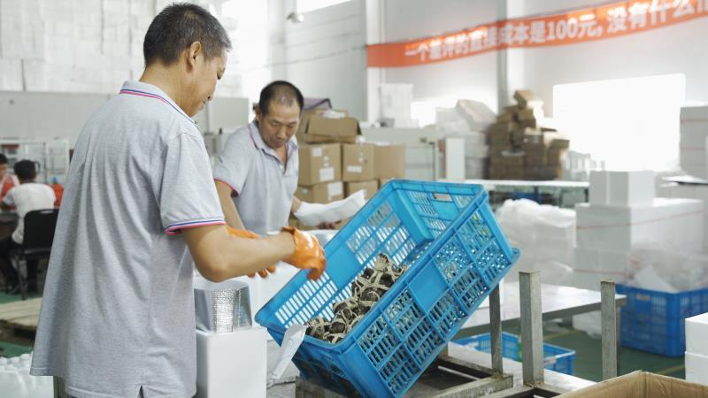 大闸蟹消费季来临:京东多举措防蟹卷乱象 推动行业规范化