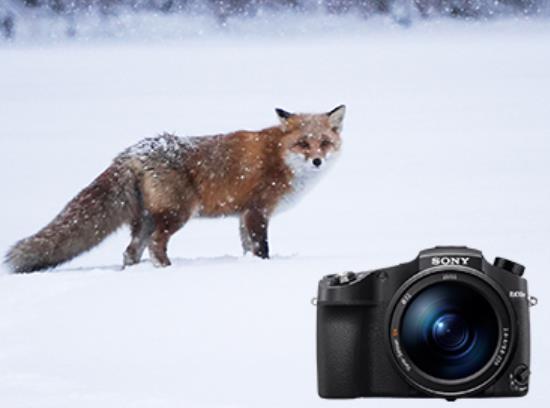 索尼决定停产数码单反产品线:未来重心将转移至无反相机