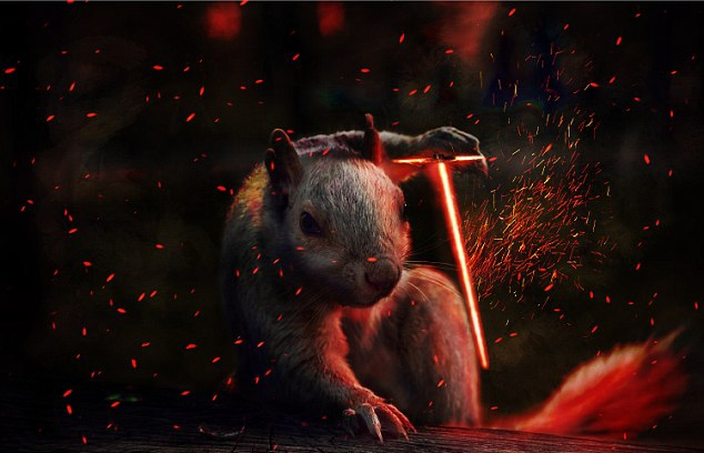 小松鼠遭p图变身各种角色 ps大神作品雷人又搞笑