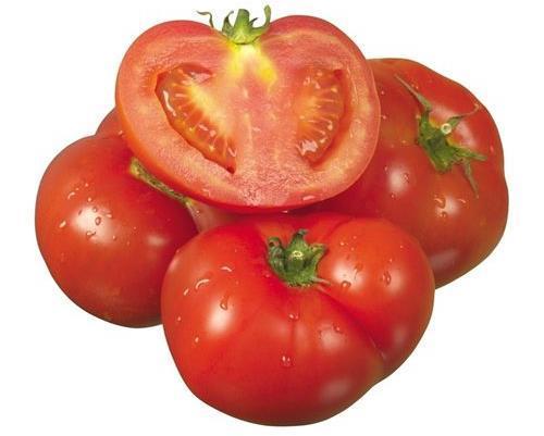 除了西红柿,还有辣椒,黄瓜,茄子和众多瓜类.