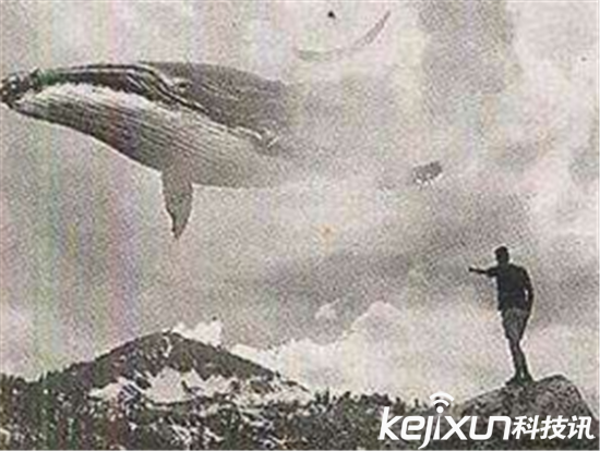 蓝鲸死亡游戏只是在胳膊画鲸鱼 50个任务任务细节曝光图片